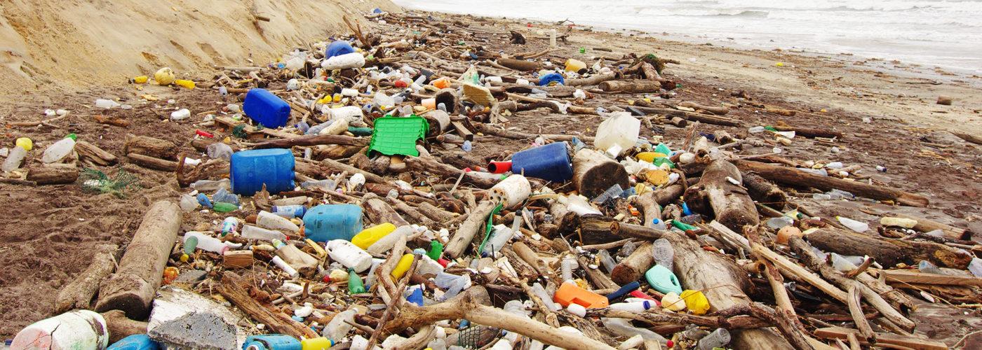 beach-waste-wide